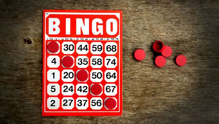 Check Out Who's Playing at Bingo Day