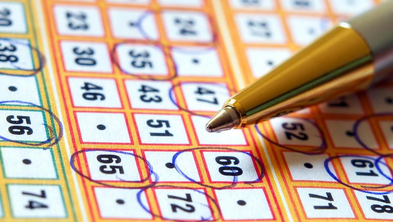 Free Bingo on a Daily Basis