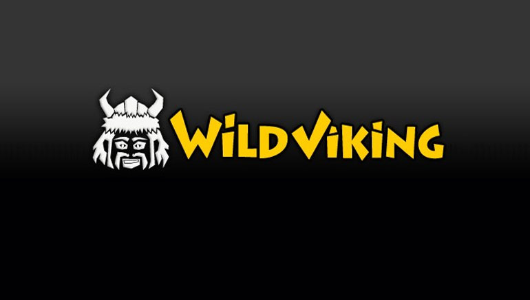 Go Crazy and Have Fun by Playing Wild Viking
